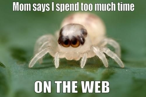mom-says-i-spend-too-much-time-on-the-web